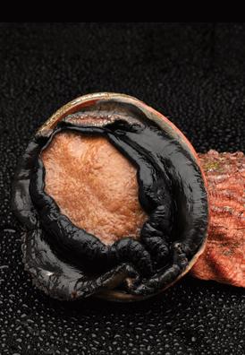 Frozen Blacklip Abalone